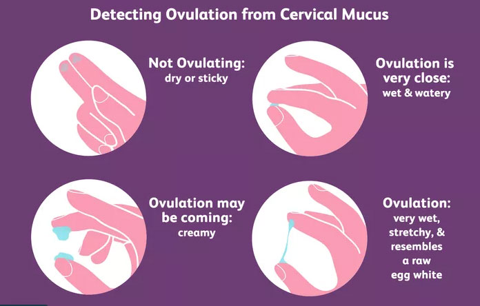 causes of cervical mucus changes